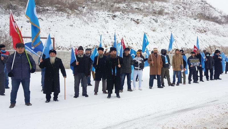 DoguTürkistan
